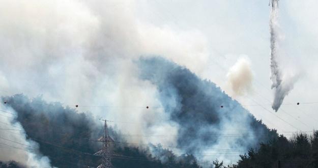 청와대 밤새 전방위 대책 전국 소방차·헬기 속속 집결 특별재난지역 지원도 총력