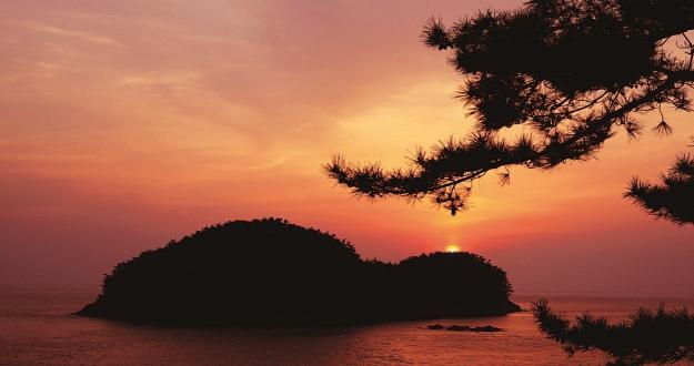 바다 너머 지는 해가 나무에 말한다
